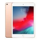 """Apple iPad mini 5 Wi-Fi + Cellular 256GB - Oro + AppleCare Plus per iPad / iPad Mini """"2 anni di assistenza tecnica e copertura per i danni accidentali"""""""