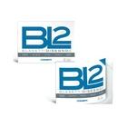 Blasetti BL2 carta da disegno Liscio 20 fogli