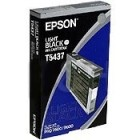 Epson Grigio - Grey 110ml f Stylus Pro 7600