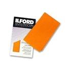 "Ilford Antistaticum 13 x 13"" Strofinaccio Arancione"