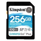 Kingston SDG3/256GB Plus 256 GB SD Classe 10 UHS-I