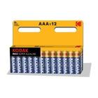 Kodak AAA Batteria monouso Mini Stilo AAA Alcalino