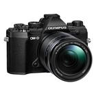 Olympus OM-D E-M5 Mark III Nero + 14-150mm f/4.0-5.6 ED II