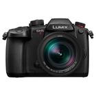 Panasonic Lumix GH5 M2 + Leica DG Vario-Elmarit 12-60mm f/2.8-4 Power O.I.S.