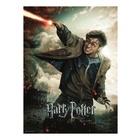 Ravensburger Harry Potter Puzzle 100 pz. XXL