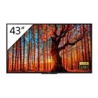 """Sony FWD-43W66F/T 43"""" LCD Full HD Nero"""