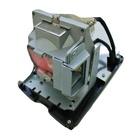 V7 Lampada per proiettori di Infocus 5J.J2N05.011