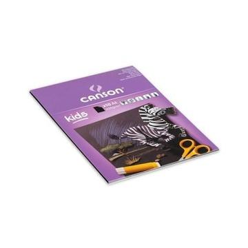 Canson 400015602 carta da disegno 10 fogli