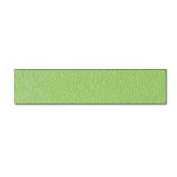 CARTOTECNICA FAVINI Prismacolor 220 Sigillo cartone 220 g/m² 20 fogli Verde