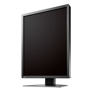 EIZO RadiForce MX216-SB LED 21