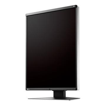 EIZO RadiForce RX360 21.3