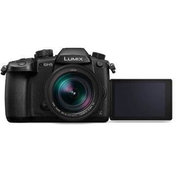 Panasonic Lumix GH5 + Leica DG Vario-Elmarit 12-60mm f/2.8-4 Power O.I.S.