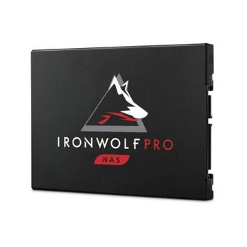 IronWolf 125 Pro 2.5
