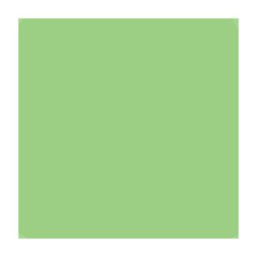 Superior Fondale in cartoncino Apple Green 1,31X11m