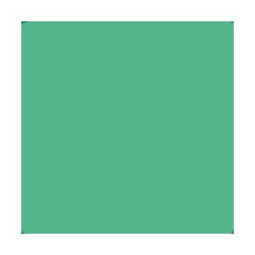 Superior Fondale in cartoncino Mint 1,31X11m