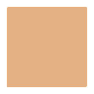 Superior Fondale in cartoncino Pongee 1,31X11m