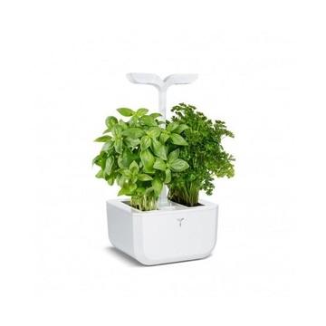 Veritable 3760262510873 Vaso smart con illuminazione Bianco