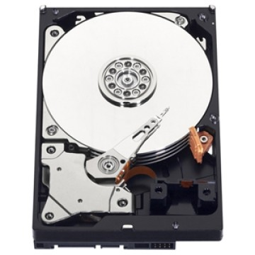 Western Digital Blue 2 TB, HDD, Serial SATA III