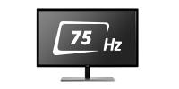 Refresh rate 75 Hz