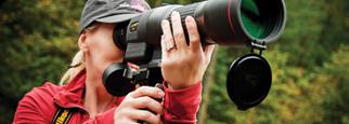 per Birdwatching